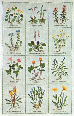 フレメ クロスステッチ 刺繍キット 【野の花(rock plant)】 野の花 デンマーク 輸入ししゅうキット