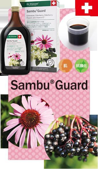 저렴 하 게 ♪에서 추운 계절에 건강 유지에 エキナセア의 삼 부 가드 Sambu Guard500ml에서 엘 더 베리 エキナセアジュース 꿀/アセロラ 가루/레몬 주스를 플러스 ♪