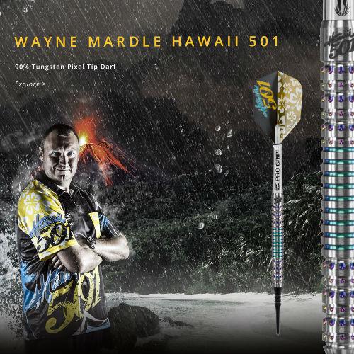 다트 배럴 WAYNE MARDLE Hawaii 501 SOFT TIP 웨인 알마 델 (포스트 편 불가)