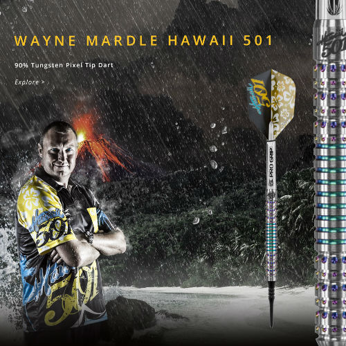 Wayne Mardle 飞镖桶韦恩 MARDLE 夏威夷 501 软提示 (非员额飞行)