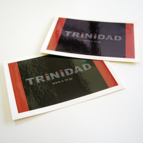 ACCESSORIES STICKER -  TRiNiDAD - TRiNiDAD Logo Stickers