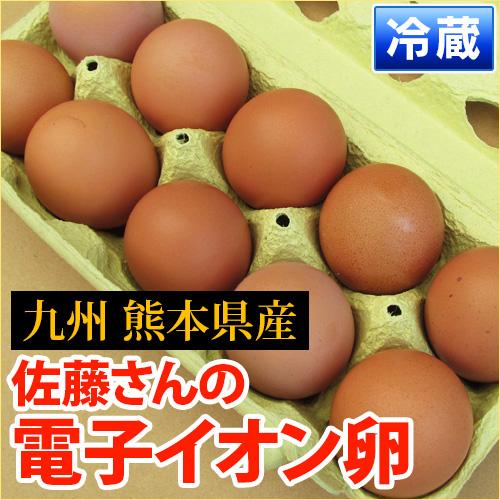 元気な鶏をヒナから育てる! 熊本産 佐藤さんの「 電子イオン卵 10個入り 」 衛生管理・環境も万全 【 野菜セット同梱で 熊本 九州 卵 たまご 玉子 鶏     生 卵かけご飯 】
