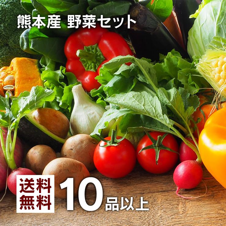 野菜セット 詰め合わせ 生産者から直送の新鮮野菜を含む 熊本県中心の九州野菜をクール便送料込みでお届けいたします 使いやすい定番旬野菜を心掛けております 送料無料 レビュー件数7 500件超 当店人気No.1☆ 九州 送料無料でお届けします 熊本産 定番旬野菜 10品以上保証 たっぷり くまもと野菜セット 熊本 ご当地 贈答 まとめ買い特価 食材 父の日 お取り寄せ お中元 母の日 福袋 ギフト セット グルメ 野菜 お歳暮