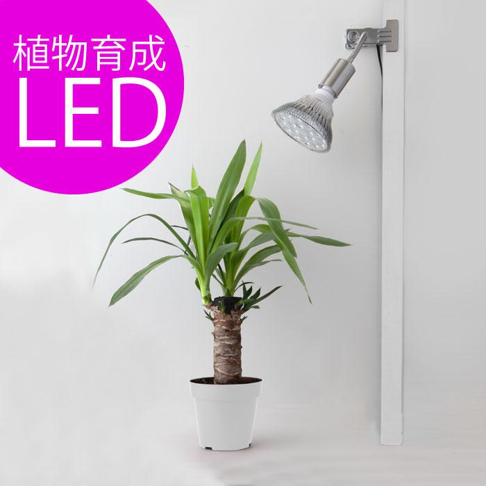 植物育成LED Plant Light18wクリップタイプ (OPT-18W)+(プラントクリップA)観葉植物 植物栽培ライト
