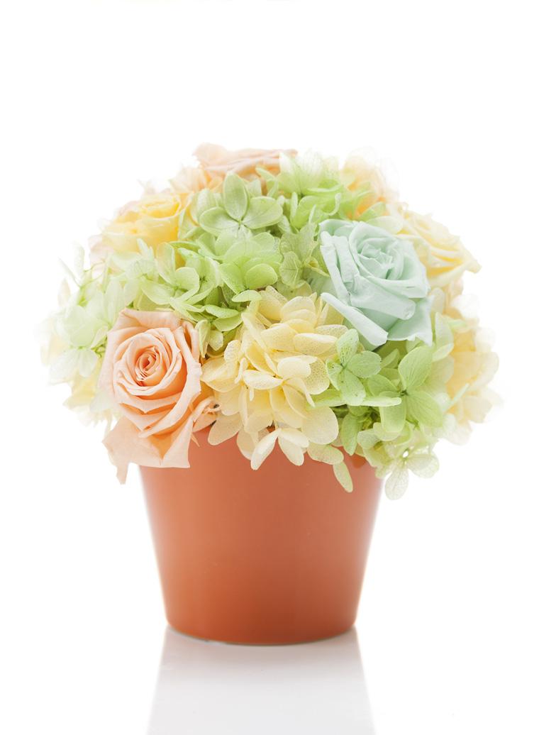 花 フラワーギフト プリザーブドフラワー アレンジメント 花 誕生日プレゼント インテリア リビングルーム 結婚記念日 引越し祝い 還暦祝い お祝い 贈呈 Euphrasie Small