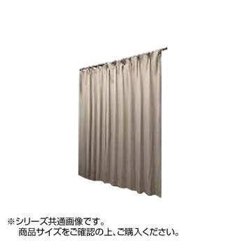 【代引き・同梱不可】レイリー カーテン 防炎・遮光性 200×215cm 1枚 IV 5390