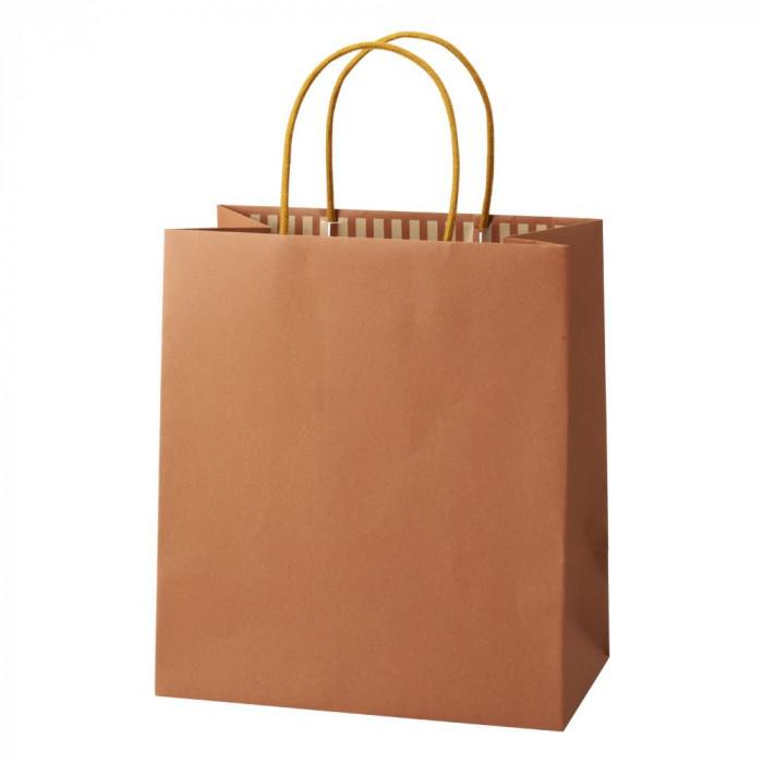 【代引き・同梱不可】パックタケヤマ 手提袋 ST カラーズ タンジェリン 10枚×10包 XZT68302紙袋