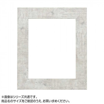 【代引き・同梱不可】アルナ 樹脂フレーム デッサン額 APS-05 ホワイト 大判 57160