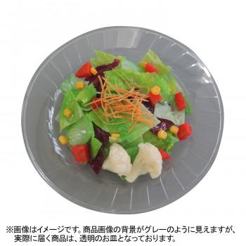 【代引き・同梱不可】日本職人が作る 食品サンプル サラダ IP-543見本 リアル 野菜