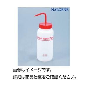 (まとめ)フッ素加工洗浄瓶500ml 2421-0500【×10セット】【日時指定不可】