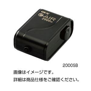 (まとめ)エアーポンプ 2000SB【×3セット】【日時指定不可】
