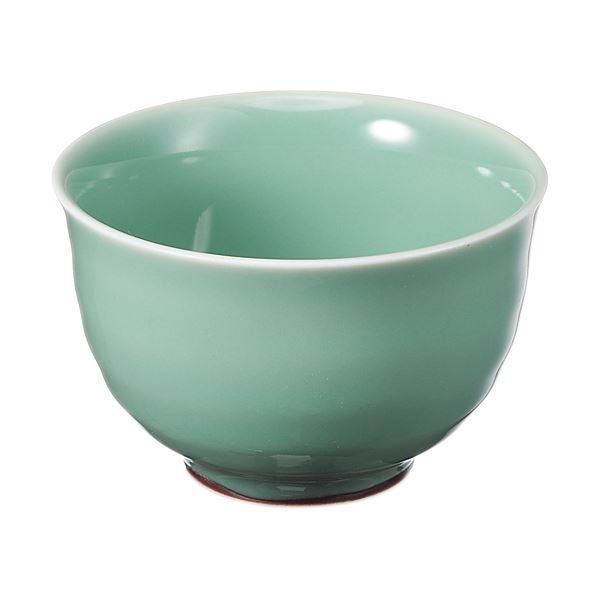 (まとめ) いちがま 天龍煎茶 1セット(5客) 【×4セット】【日時指定不可】