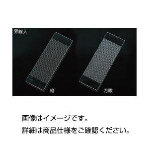 (まとめ)界線入スライドグラス方眼1.0mm目盛 1枚【×3セット】【日時指定不可】