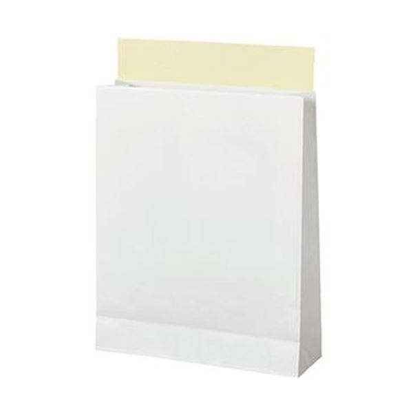 TANOSEE 宅配袋 晒片つや 小 白封かんテープ付 1パック(100枚) 【×10セット】【日時指定不可】