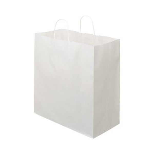 (まとめ)TANOSEE 紙手提袋 丸紐マチ広・特大 ヨコ430×タテ440×マチ幅210mm 白無地 1パック(50枚)【×5セット】【日時指定不可】