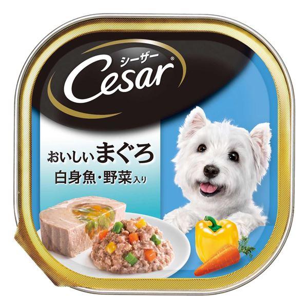 (まとめ)シーザー おいしいまぐろ 白身魚・野菜入り 100g【×96セット】【ペット用品・犬用フード】【日時指定不可】