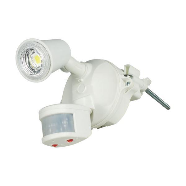 日動工業 LEDセンサーライトクラブアイ 10W SLS-CE10W-1P 1台【日時指定不可】