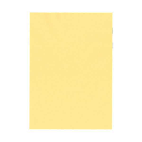 (まとめ)北越コーポレーション 紀州の色上質A3Y目 薄口 クリーム 1冊(500枚)【×3セット】【日時指定不可】