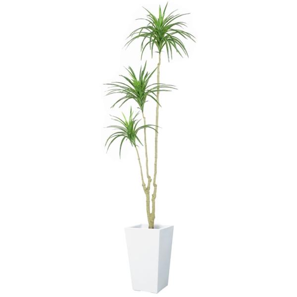 【法人様限定】160cmユッカツリー *3(ナチュラルカラーステム)《ポット別売り》(BT2023M10)[ユッカツリー ユッカ ツリー フェイクグリーン 人工観葉植物 造花]