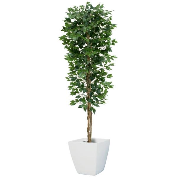 【法人様限定】210cmフィカスツリー(L)(ナチュラルトランク)《ポット別売り》(NGT2017L10)[フェイクグリーン リーフ 天然木 人工観葉植物 フィカスツリー フィカス ベンジャミン ツリー]