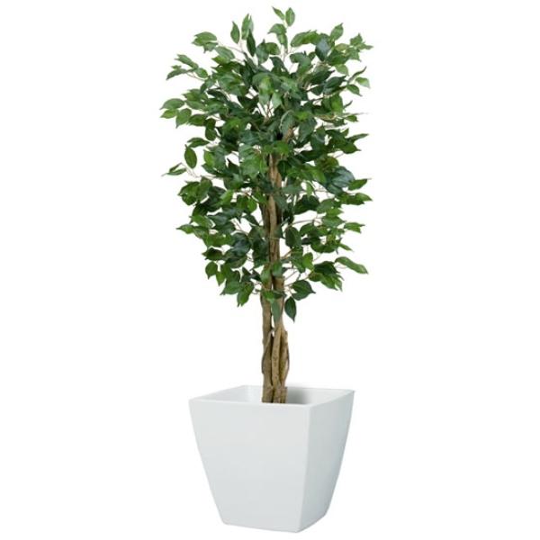 【法人様限定】120cmフィカスツリー(SS)(ナチュラルトランク)《ポット別売り》(NGT2017SS10)[フェイクグリーン リーフ 天然木 人工観葉植物 フィカスツリー フィカス ベンジャミン ツリー]