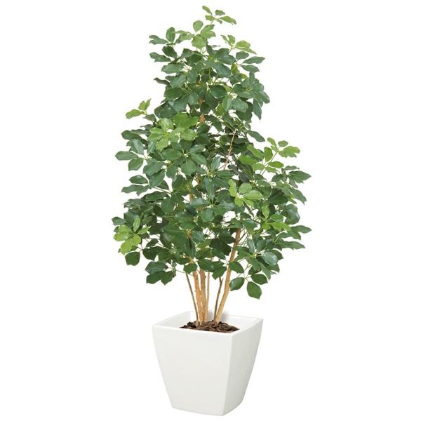 【光触媒】プレミアムカポックツリー(M)(ナチュラルトランク)【インテリアグリーン(天然木と造花のコラボ!)】《ポット別売り》