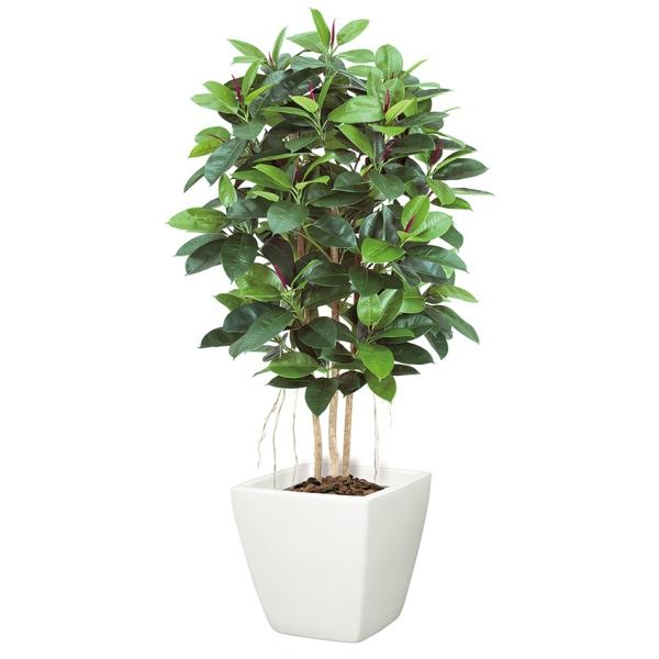 【光触媒】ゴムの木(M)(ナチュラルトランク)【インテリアグリーン(天然木と造花のコラボ!)】《ポット別売り》