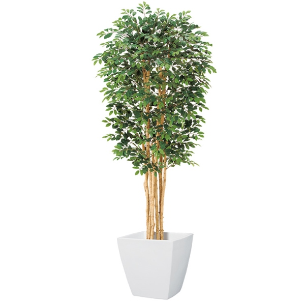 【光触媒】150cmトネリコツリー(S)(ナチュラルトランク)【インテリアグリーン(天然木と造花のコラボ!)】《ポット別売り》