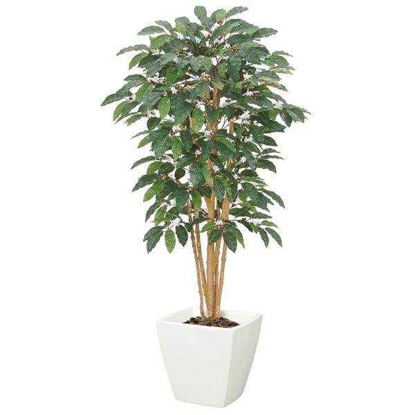 150cmコーヒーツリー(S)(ナチュラルトランク)【インテリアグリーン(天然木と造花のコラボ!)】《ポット別売り》