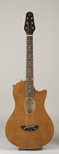 ESP BambooInn-CE Charプロデュース・ギター ピエゾピックアップを内蔵