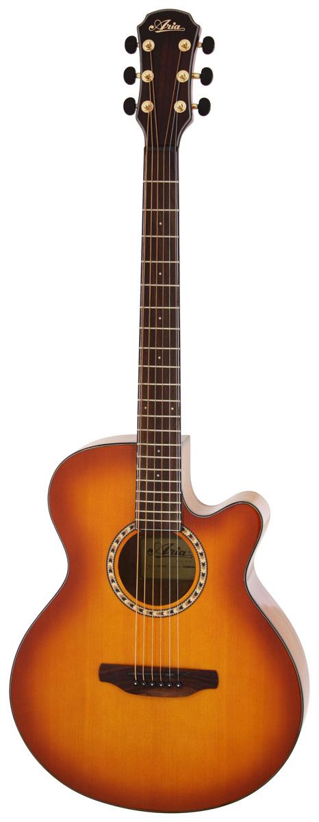 (お取り寄せ)ARIA TG-1 LVS アリア アコースティックギター アコギ