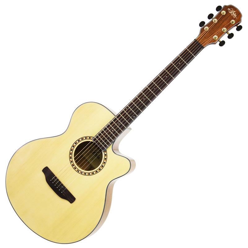 (お取り寄せ)ARIA TG-1 N(ナチュラル) アリア アコースティックギター アコギ