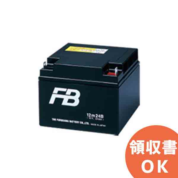 【受注品】12M17W 古河電池製 小型制御弁鉛蓄電池 mシリーズ<代引不可><メーカー直送品>【キャンセル返品不可】【時間指定不可】 [SOU]