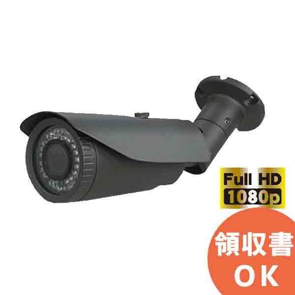 ITC-JK303 アイ・ティー・エス AHD、CVBS切替機能搭載!フルハイビジョン220万画素防雨対応パレット型防犯カメラ