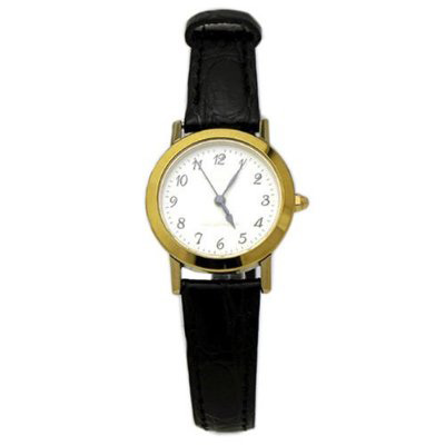 AUREOLE/オレオール AUREOLE (オレオール) 腕時計 超硬ベゼル SW-436L-2 SW-436L-2