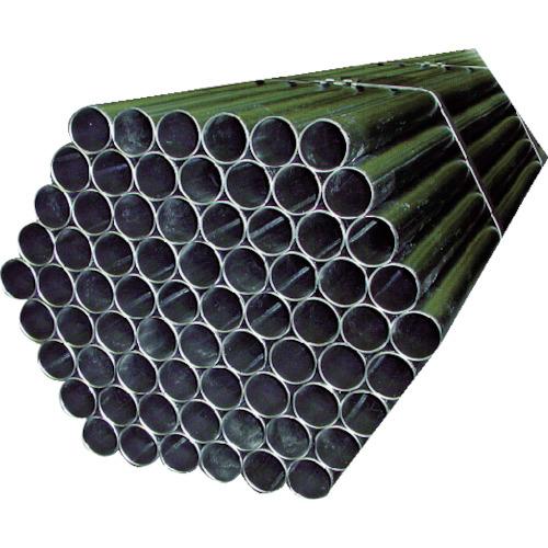 アルインコ アルインコ 単管ピン付き 48.6MMX3M TK-3M