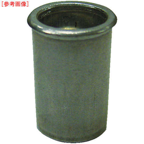 ロブテックス エビ ナット Kタイプ スティール 4-2.5 (1000個入) NSK425M