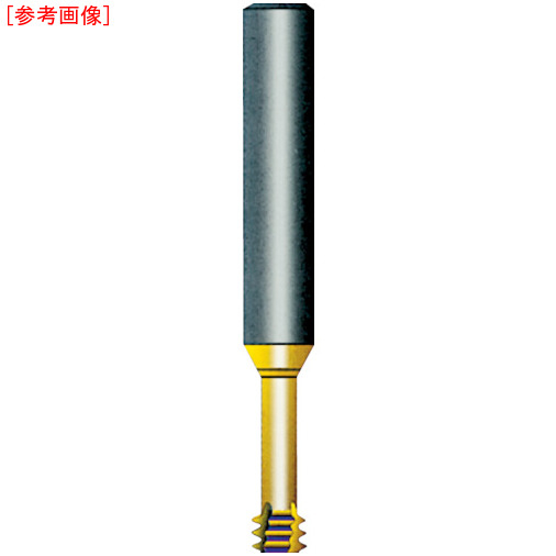 ノガ・ジャパン NOGA Carmex超硬ソリッドミニミルスレッド シャンク径10×M12.0×1.75×首下26.0 M1009C26