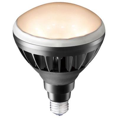 岩崎電気 屋外・屋内用LED電球 14W LDR14L-H/B830