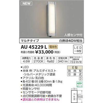 コイズミ 防雨型ブラケット AU45229L
