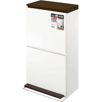 アスベル ゴミ箱 ペダル 分別 ダストボックス 2段 ワイド 40L ブラウン 4974908680083