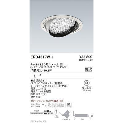 遠藤照明 LEDZ Rs series ユニバーサルダウンライト ERD4317W
