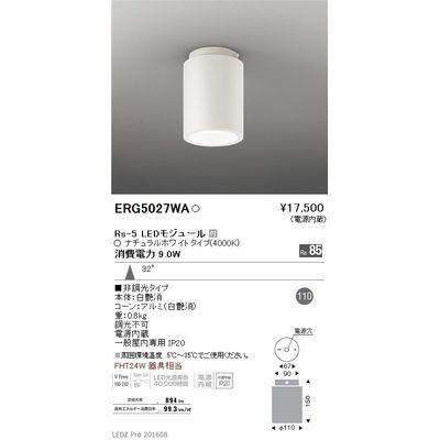 遠藤照明 LEDZ HIGH-BAY series シーリングダウンライト ERG5027WA