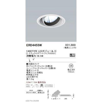 遠藤照明 LEDZ ARCHI series ユニバーサルダウンライト ERD4455W