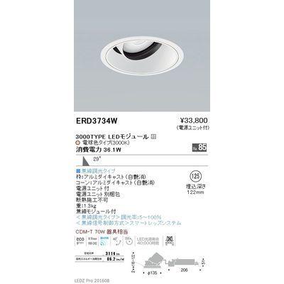 遠藤照明 LEDZ ARCHI series ユニバーサルダウンライト ERD3734W