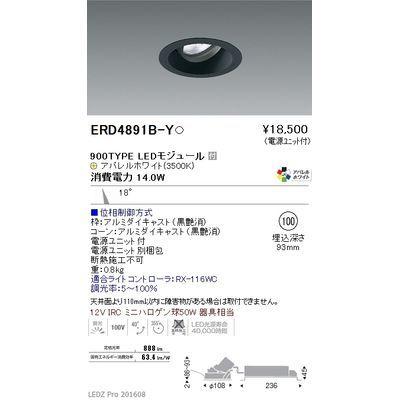 遠藤照明 LEDZ ARCHI series ユニバーサルダウンライト ERD4891B-Y