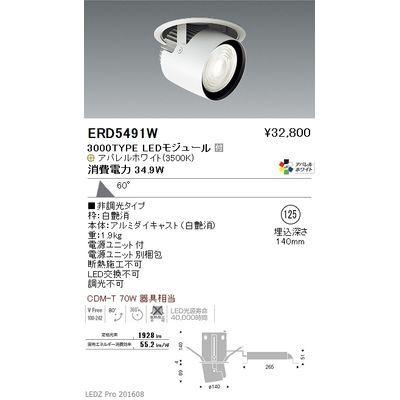 遠藤照明 LEDZ ARCHI series ダウンスポットライト ERD5491W