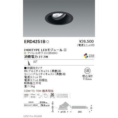 遠藤照明 LEDZ ARCHI series ユニバーサルダウンライト ERD4251B