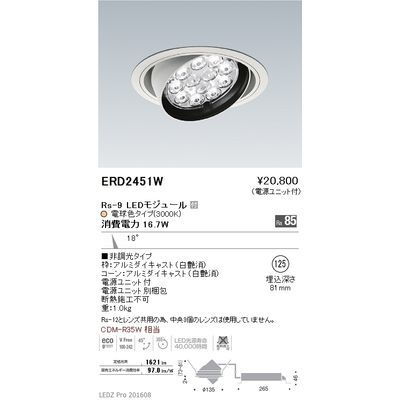 遠藤照明 LEDZ Rs series ユニバーサルダウンライト ERD2451W