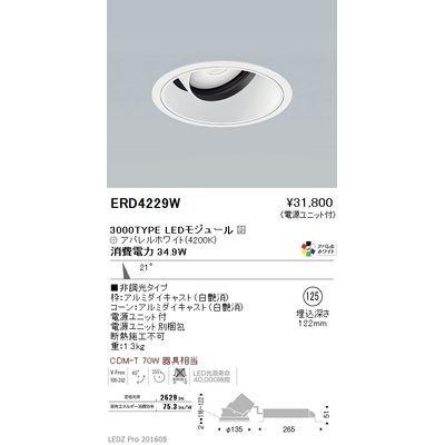 遠藤照明 LEDZ ARCHI series ユニバーサルダウンライト ERD4229W